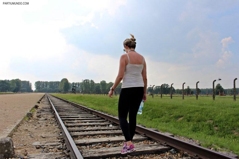 Visitando Auschwitz 15