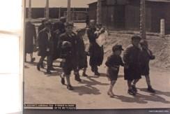 Visitando Auschwitz 16