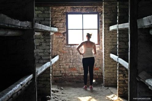 Visitando Auschwitz 17