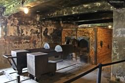 Visitando Auschwitz 21