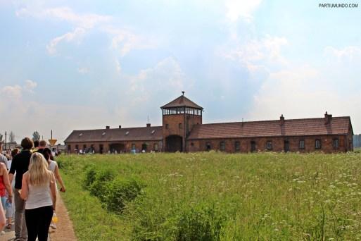 visitando auschwitz 11