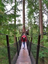 Parque Capilano Suspension Bridge 12