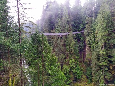 Parque Capilano Suspension Bridge 5
