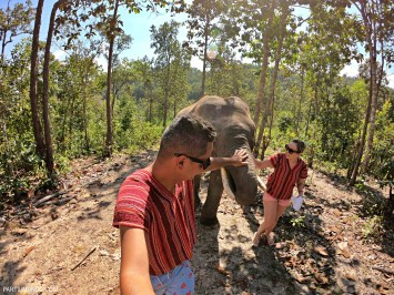 Secret Elephant Sanctuary (Chiang Mai)
