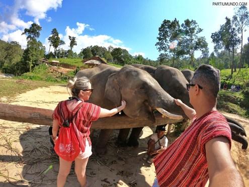 Santuário dos Elefantes