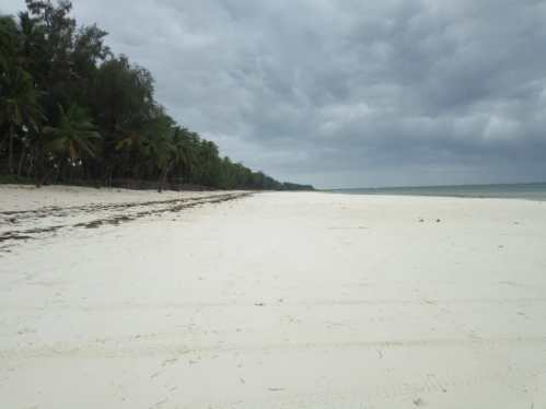 A once lively and densely populated Diani Beach deserted and lonely Kenya, Diani Beach (Photo Fredrick Otieno)