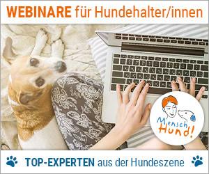 Webinare für Hundehalter/innen