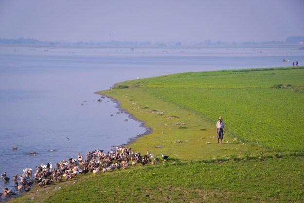 Myanmar-Selected-14(1)