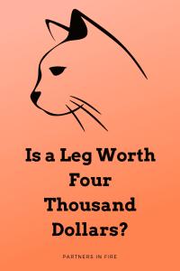 """is a leg worth four thousand dollars"""
