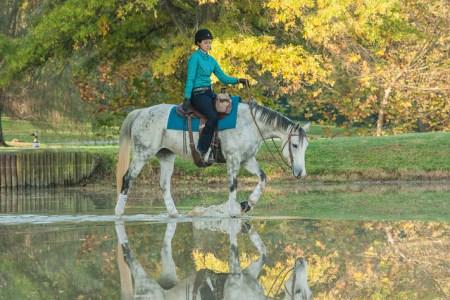 kahleesi horse on water ride