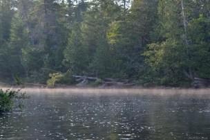 Morning mist on Allagash Stream