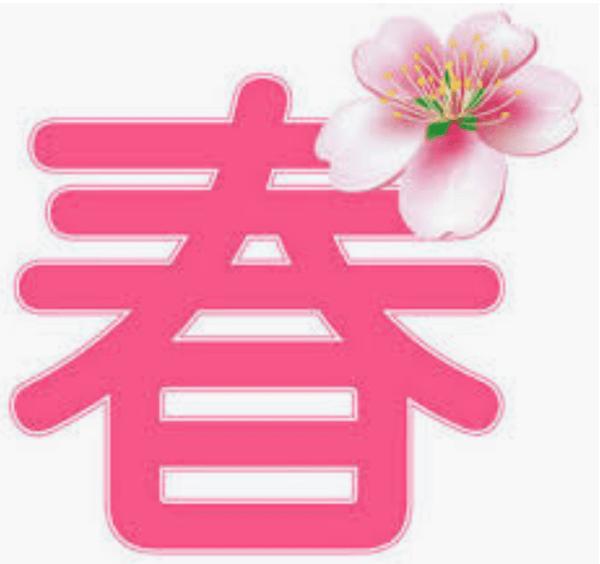 春物ですよぉ〜!| オフハウス 秦野店