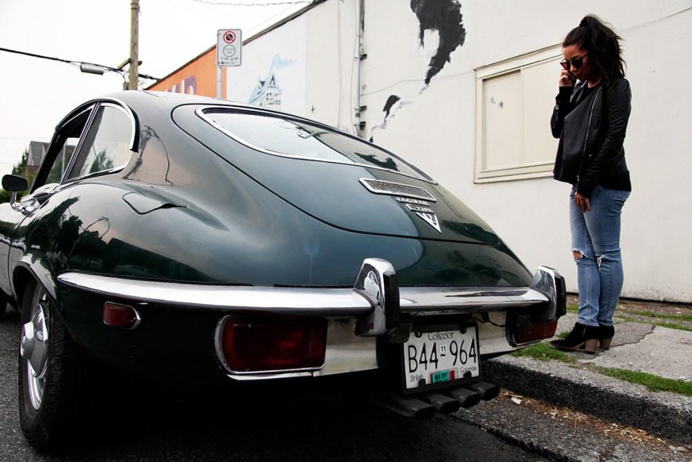 Jaguar-web-2
