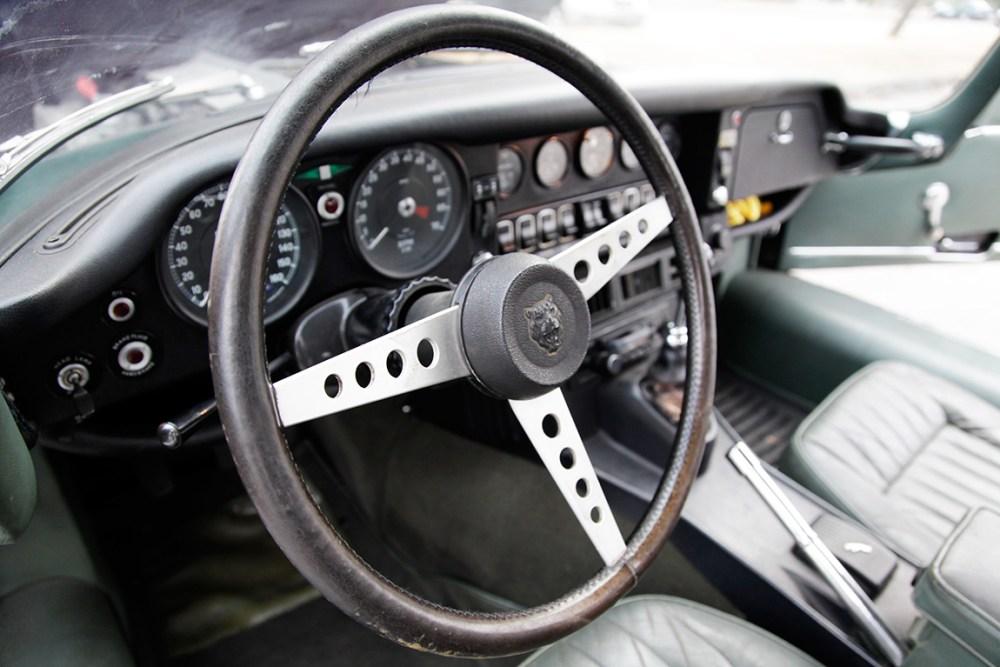 Jaguar-web-4