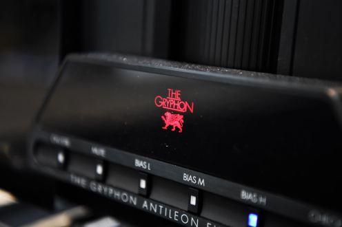 Antileon_Amp2