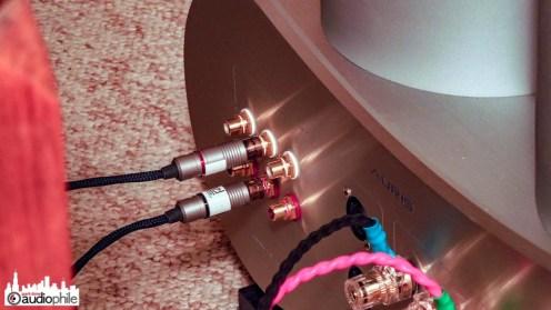 Auris-Audio-Fortissimo-DSCN1795