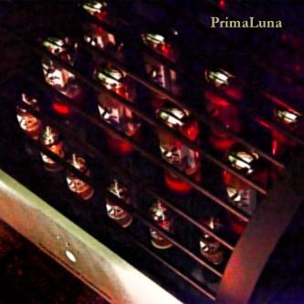 RMAF2018-Paul-Elliott-PrimaLuna_5in