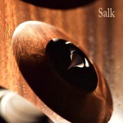 RMAF2018-Paul-Elliott-Salk1a_5in