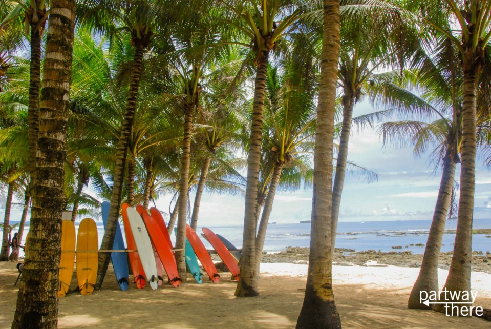 surfboards lined up in Siargao