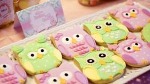 Sofie's Owl Themed Party – 1st Birthday