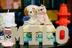 """Milo's """"Best in Show"""" Puppy Themed Party – 1st Birthday"""
