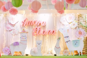 Amara's Adorable Llama Themed Party – 1st Birthday