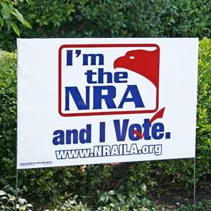 nra_vote2