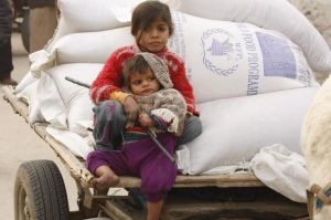 food-aids-from-the-un-to-refugees-in-gaza_34470