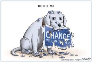 2014 Elections & blue dog democrats