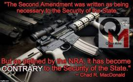 Second Amendment meme