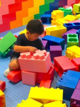 Mega Building Bricks for Sale
