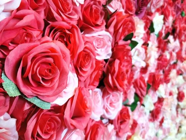 Wedding Artificial Flower Wall Rental Singapore