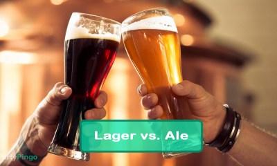 Forskellen mellem Lager og Ale