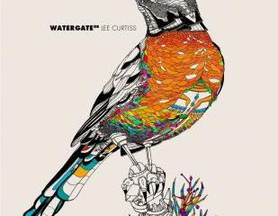 Watergate 08 Mixed by Lee Curtiss Watergate Records Releasedate: 04.07.11