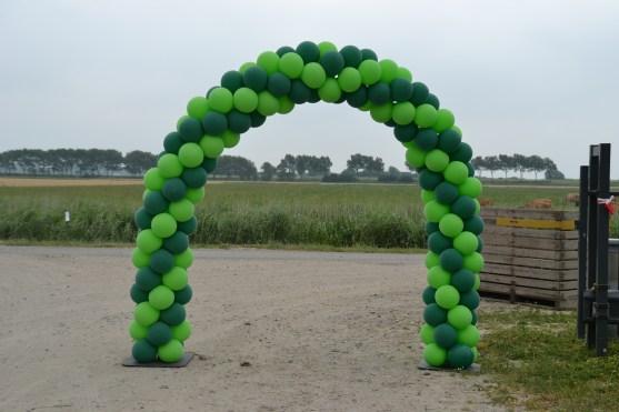 Lime groen/Bos groen 6m