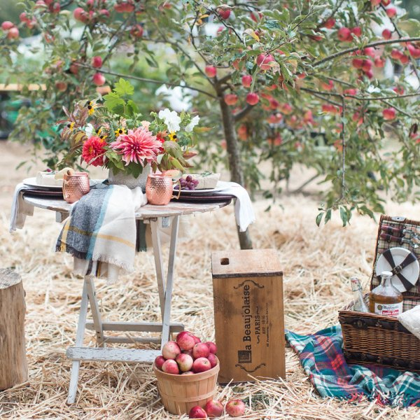 A Picnic under the Apple Tree