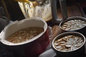 Healthy Almond Apple Cake - Parveenskitchen.com