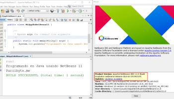 Netbeans Java 11
