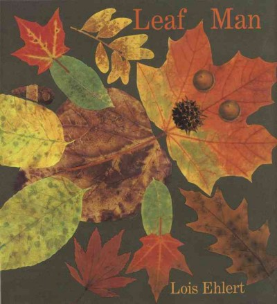 Fall Leaves ~ Sensory Storytime