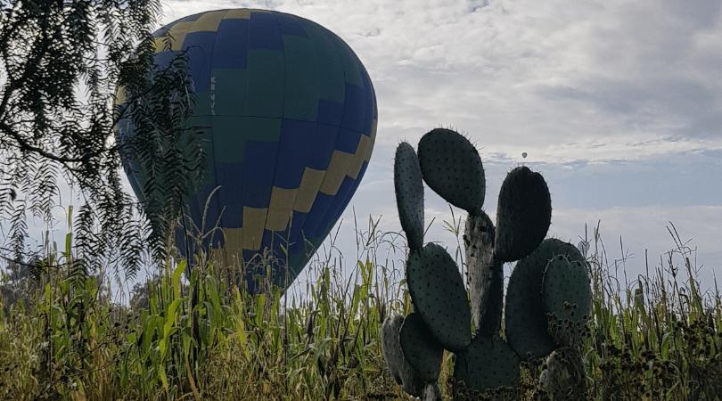Los nopales y el globo, una imagen muy mexicana