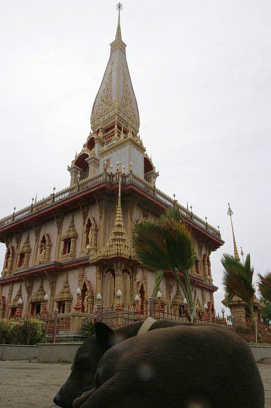 Didžioji Phuketo šventykla