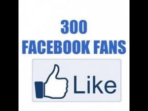300 FB fans