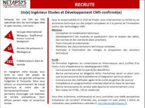 NETAPSYS Madagacar recrute un Chef de Projet PHP-CMS confirmé.