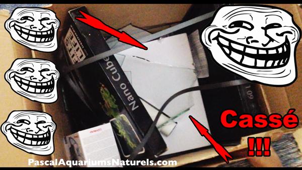 aquarium livré cassé !