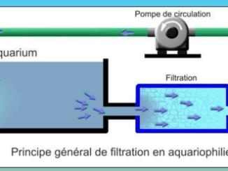 les filtrations