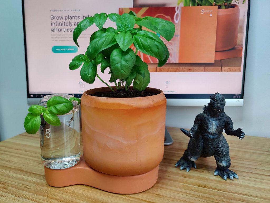 greenfinity projet kickstarter et Godzilla.