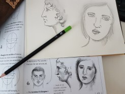 Studio viso e profilo 2