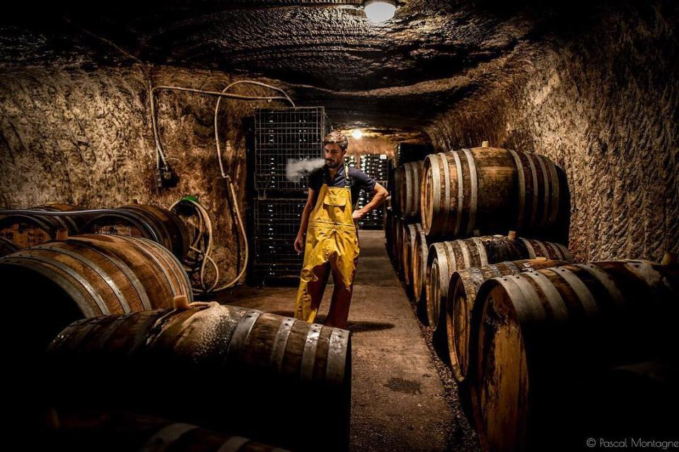 (3/3) Cellar master is taking a break among barrels. @liseetbertrandjousset domain, Montlouis sur Loire, France. #winelover #wine #grapevine #wineporn #vine #barrels #barrel #loirevalleywines #loirevalley #instagood #instalike #instafood #nature @igerstours @loirevalleytourism @myloirevalley @sigmafrance