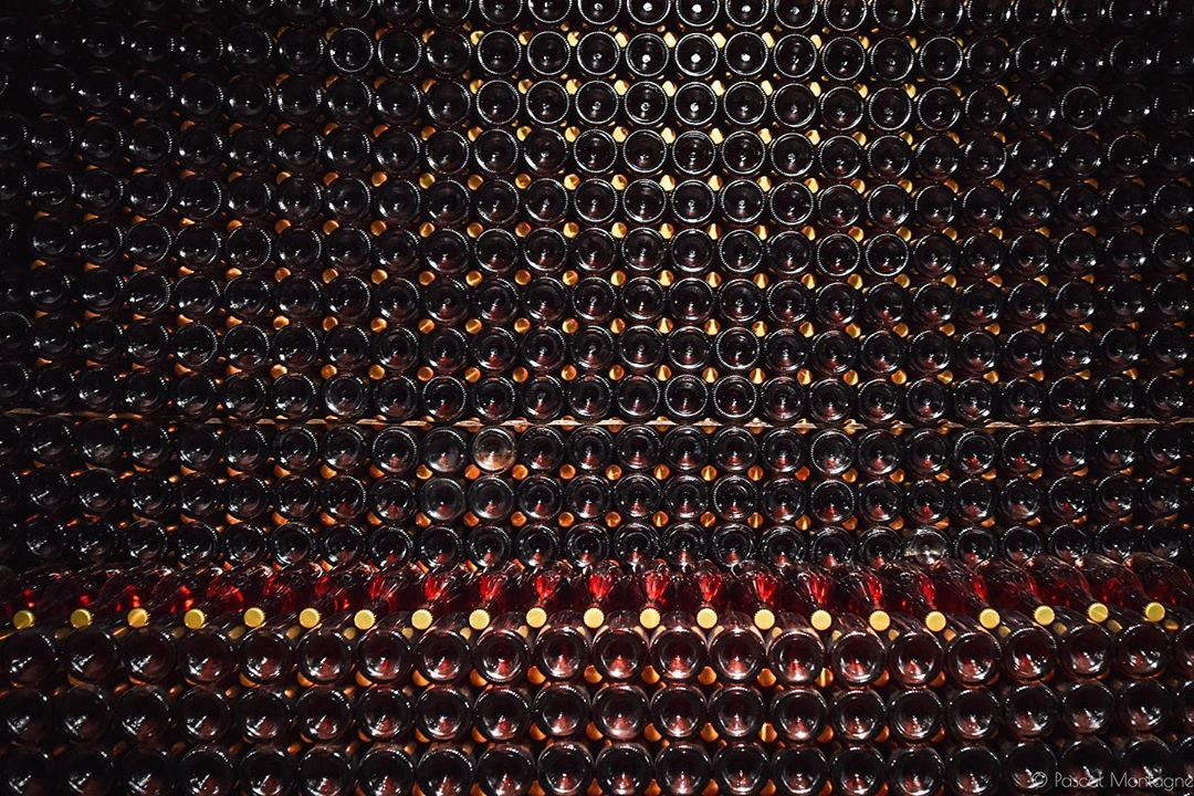 Confinement – day 18 – wine stock in a French cellar #tourism #wine #frenchlifestyle #lifestyle #alcohol #bottle #grapes #grapewine #winelover #winelovers #winestagram #confinement #confinamento #covid #covid19 #coronavirus