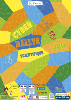 Infographiste Rouen Pascal Ridel affiche cyber rallye 2017